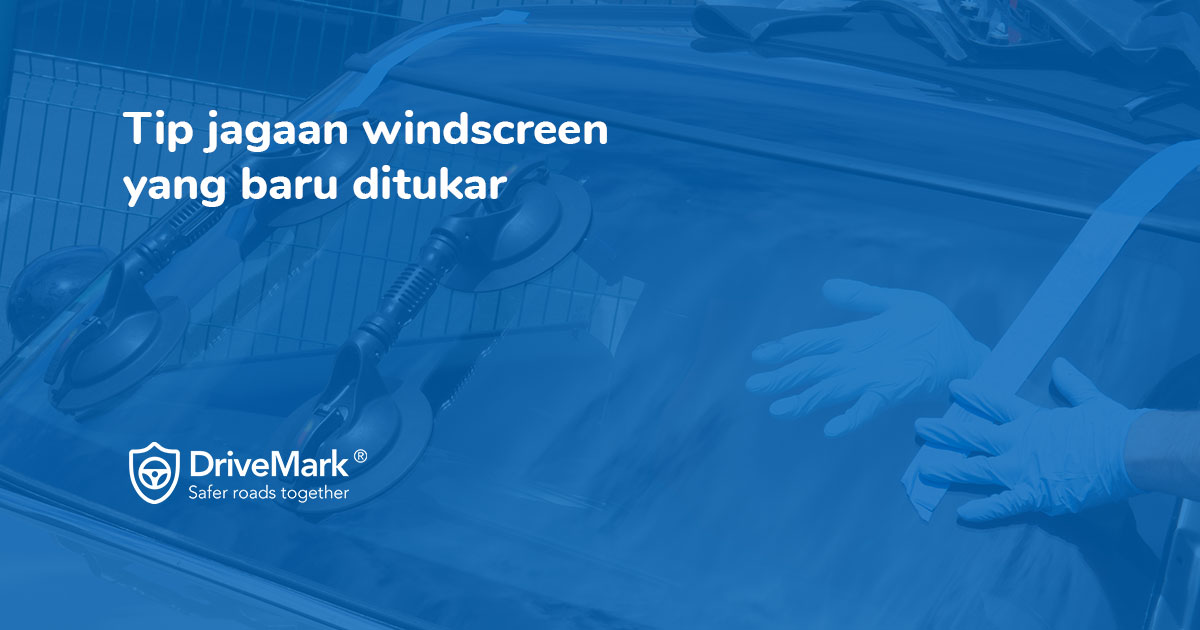 Windscreen Care Guide