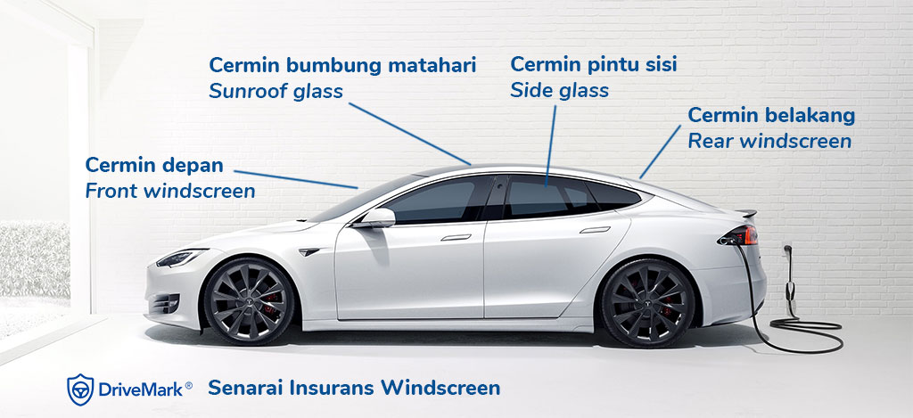 Windscreen Insurance Coverage List